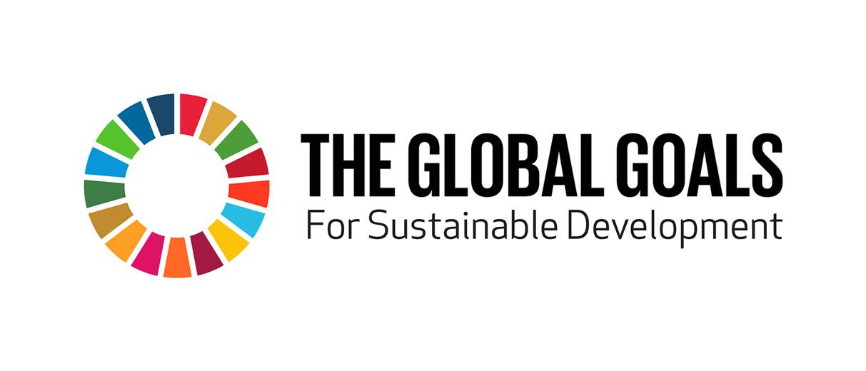 Obiective globale de dezvoltare durabila